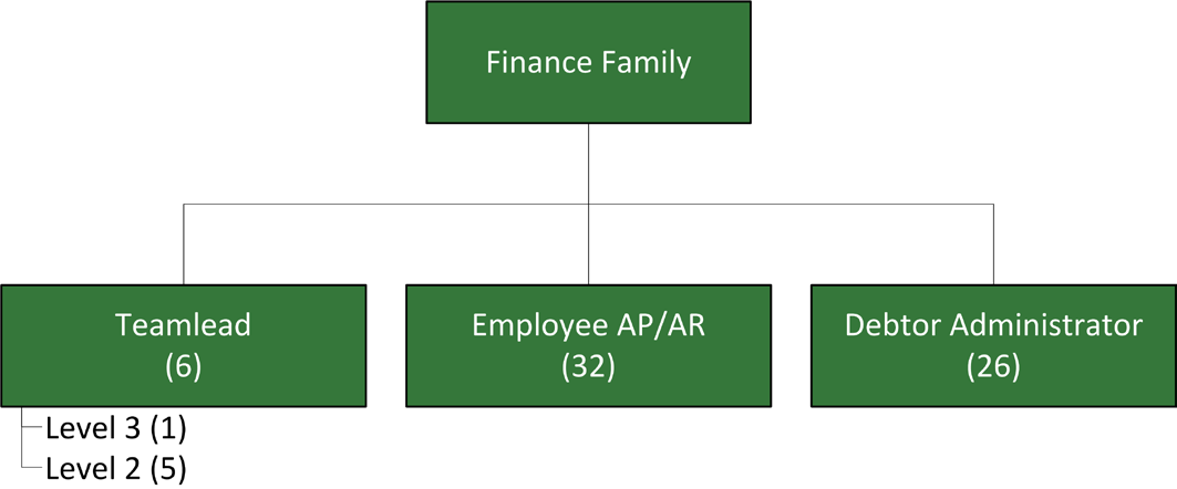 Chapter 7: Pilot Project Figure 33: Organizational structure Accounts Receivable 7.2.