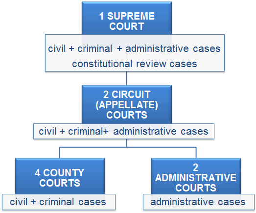 Figure B13.1 - Court system Estonia 1.2. Criminal case file The criminal case file contains the collection of evidence concerning a particular criminal case against a defendant.