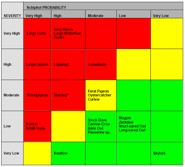 Risk matrix @