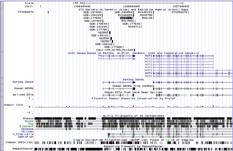 How many genes are located between the STS markers SWXD113 anddxs52?