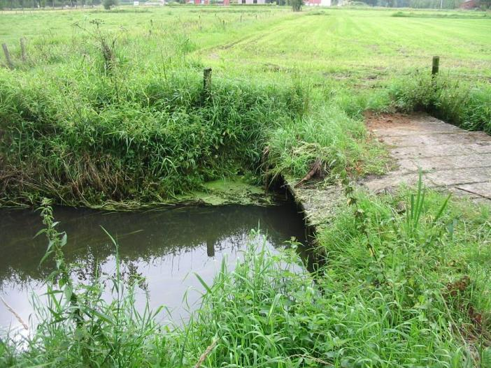 A difficult balance between water management and ecology.