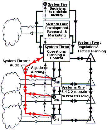 Viable System Model (Stafford