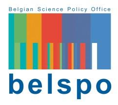 BRAIN-be BELGIAN RESEARCH ACTION THROUGH INTERDISCIPLINARY NETWORKS Joint call for proposals: Extended Working Life