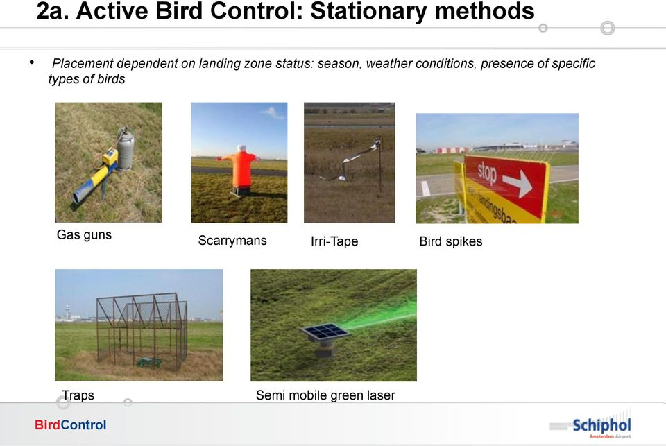 conditions, presence of specific types of birds Gas