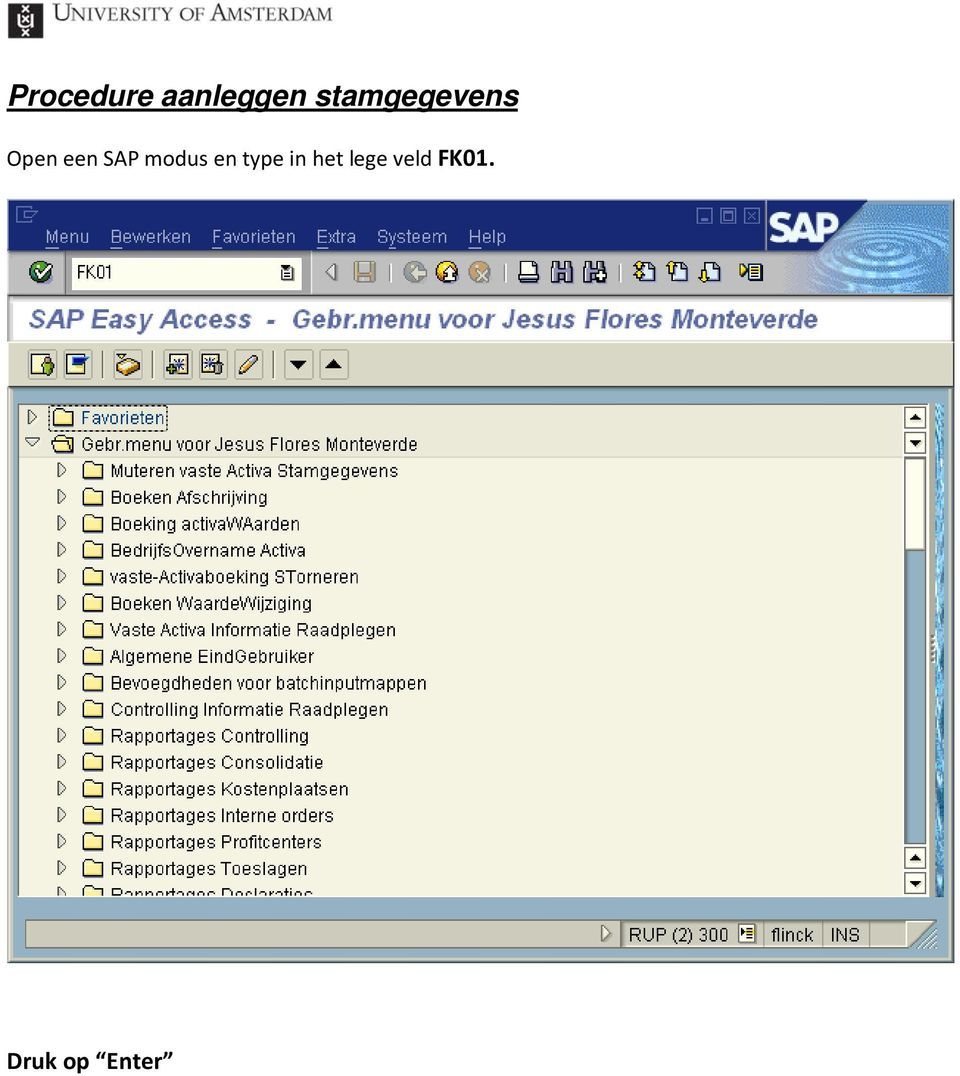 SAP modus en type in