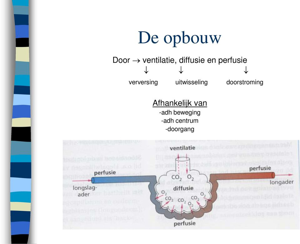 uitwisseling doorstroming