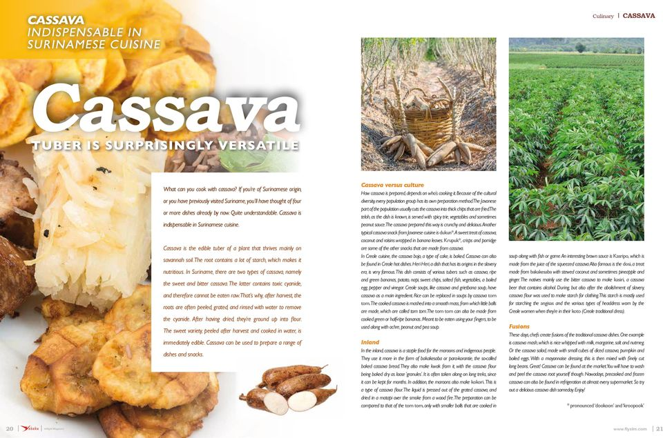 Cassava is indispensable in Surinamese cuisine. Cassava is the edible tuber of a plant that thrives mainly on savannah soil. The root contains a lot of starch, which makes it nutritious.