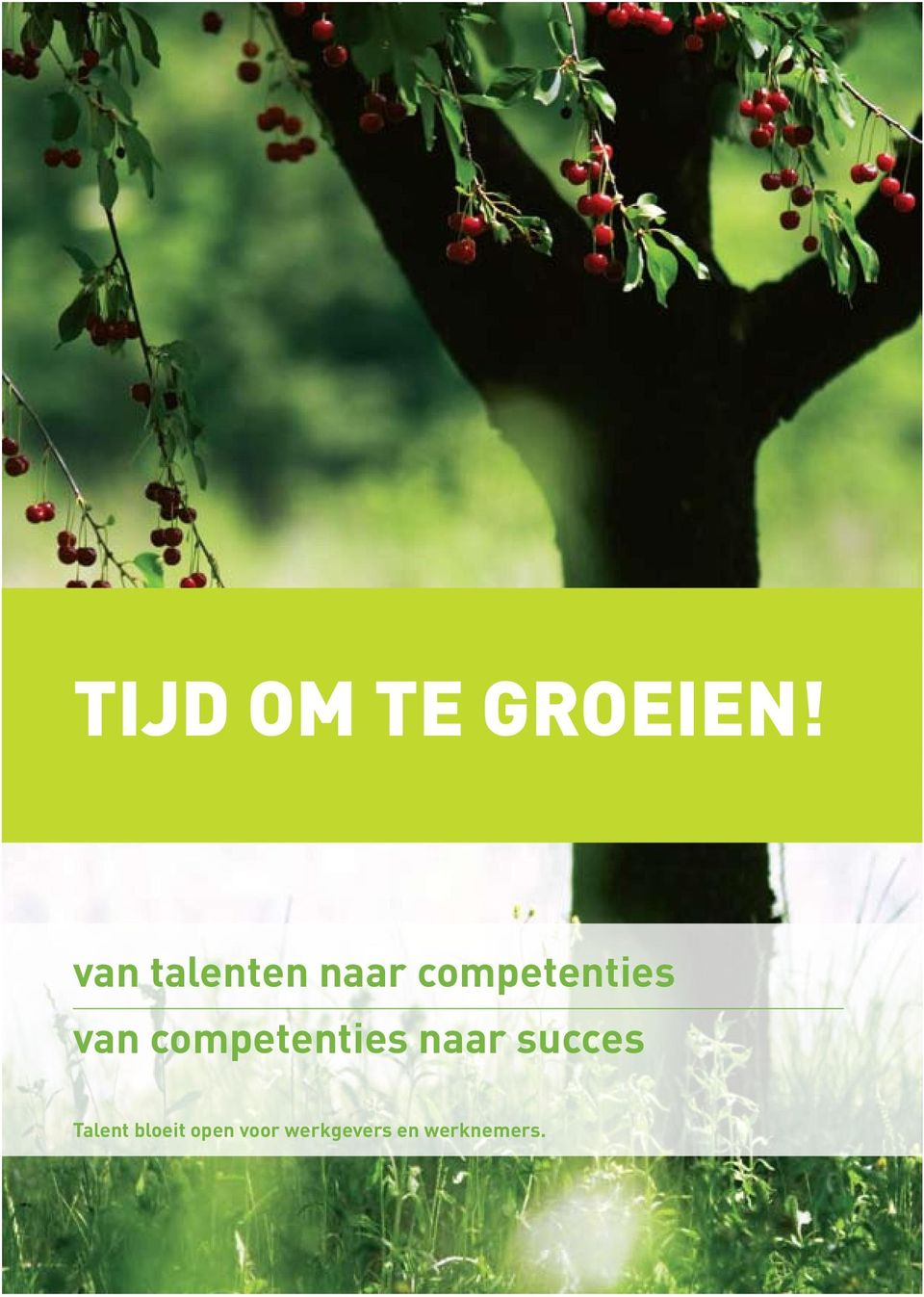 competenties naar succes Talent
