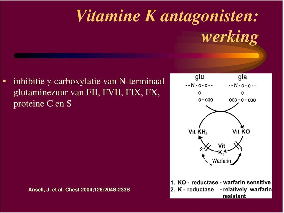 glutaminezuur van FII, FVII, FIX, FX,
