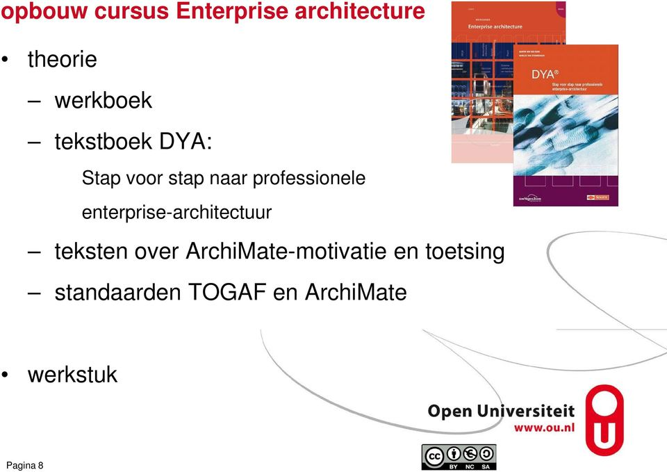 enterprise-architectuur teksten over