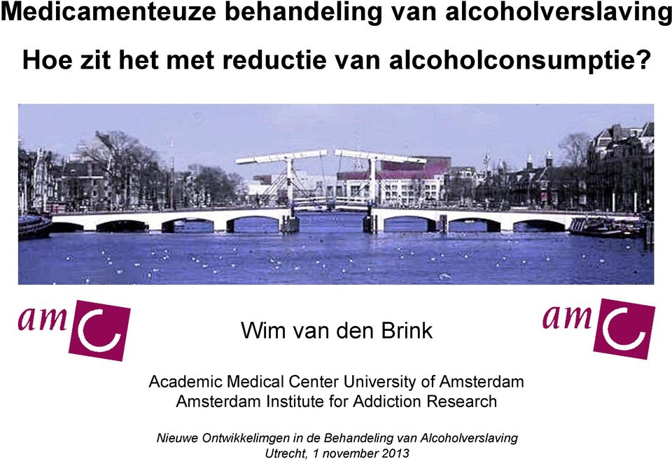 Wim van den Brink Academic Medical Center University of Amsterdam