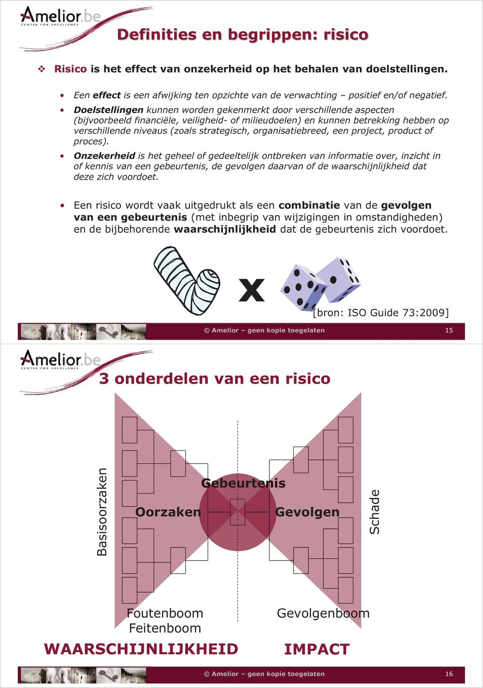 organisatiebreed, een project, product of proces).