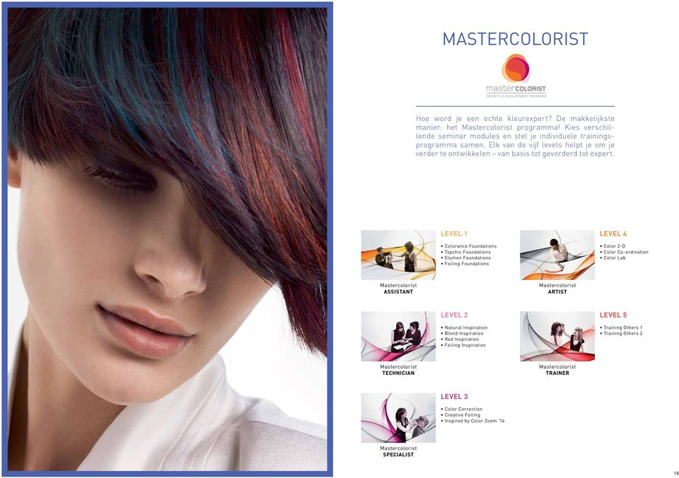 LEVEL 1 Colorance Foundations Topchic Foundations Elumen Foundations Foiling Foundations LEVEL 4 Color 2-D Color Co-ordination Color Lab Mastercolorist ASSISTANT Mastercolorist ARTIST LEVEL 2