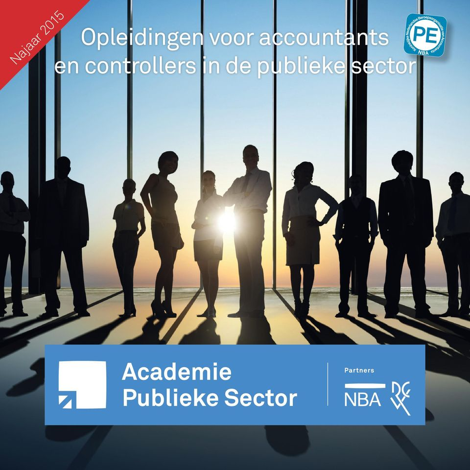 accountants en