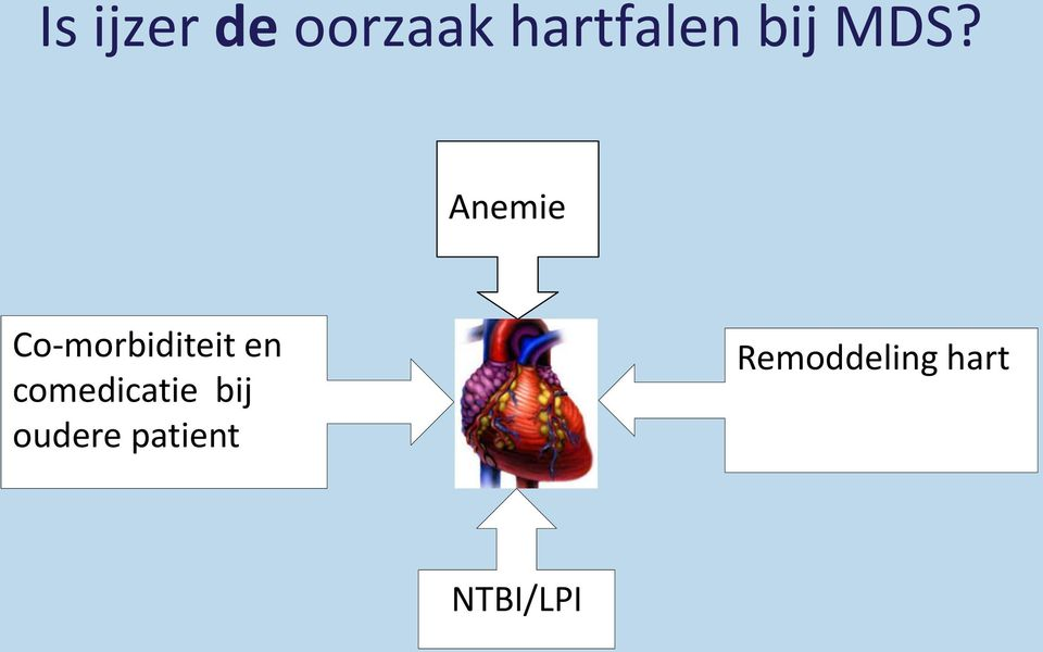 Anemie Co-morbiditeit en