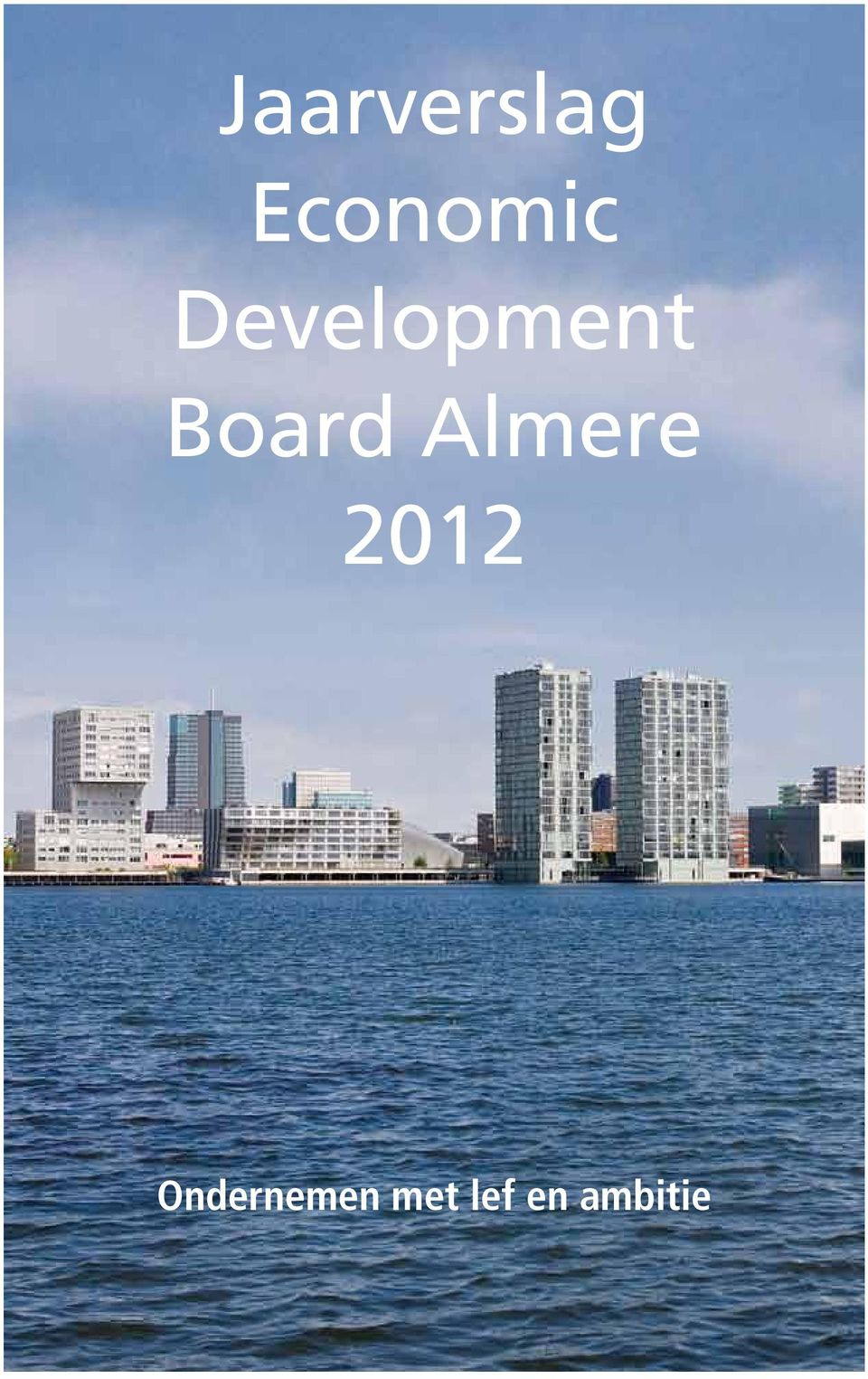 Development Board