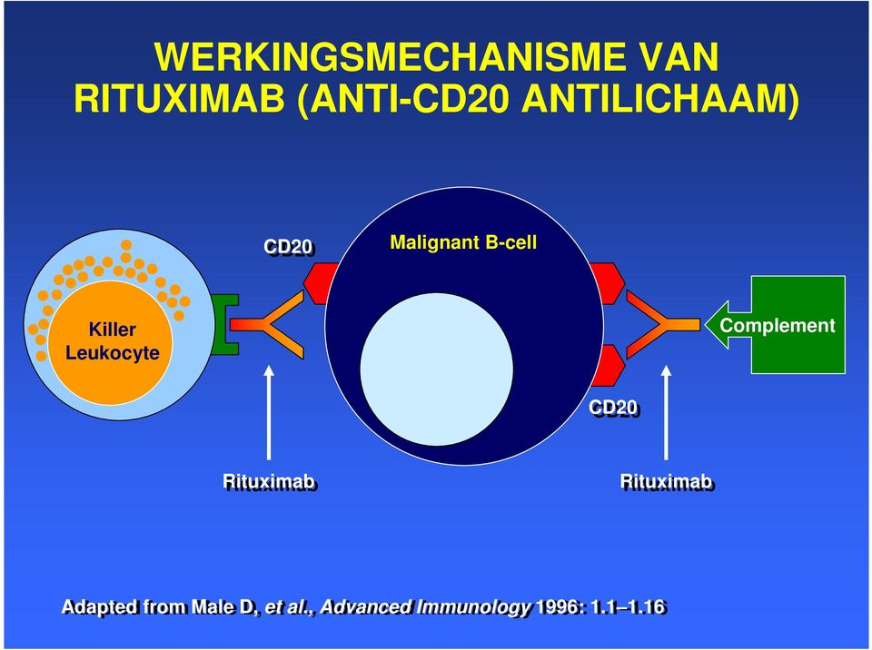 Leukocyte Complement CD20 Rituximab Rituximab