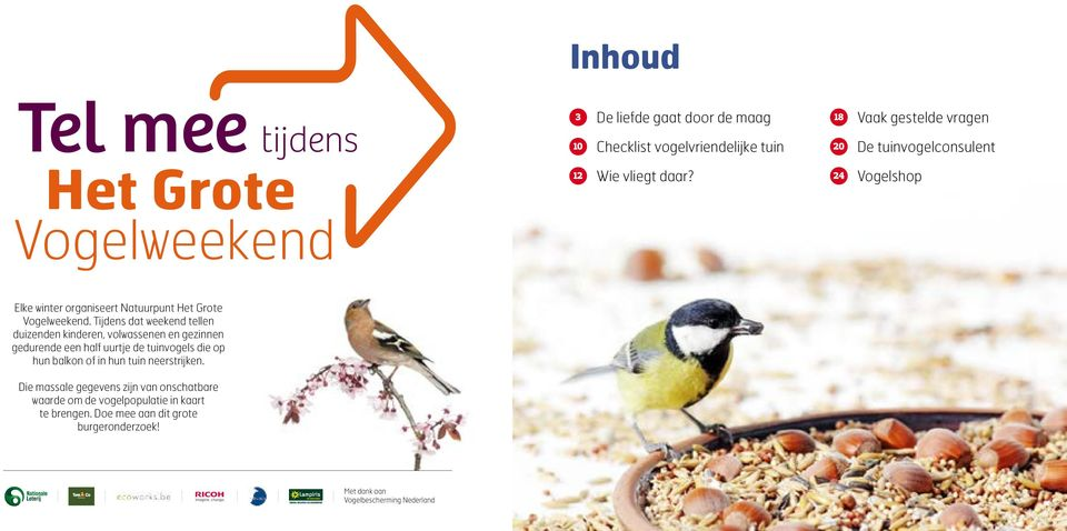 vogels winters in de tuin