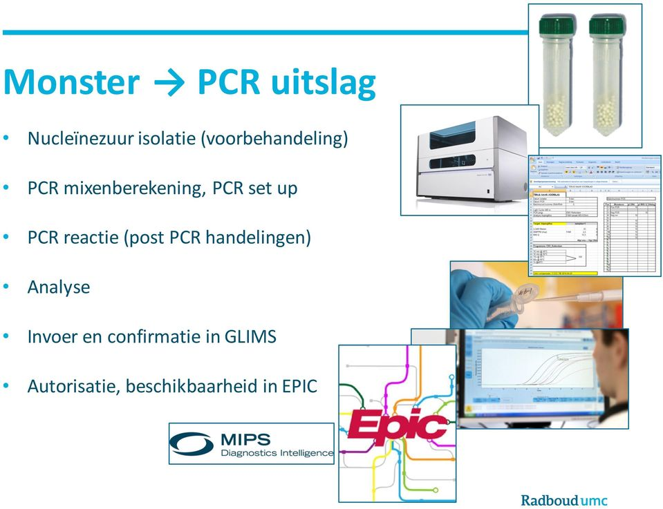 PCR reactie (post PCR handelingen) Analyse Invoer