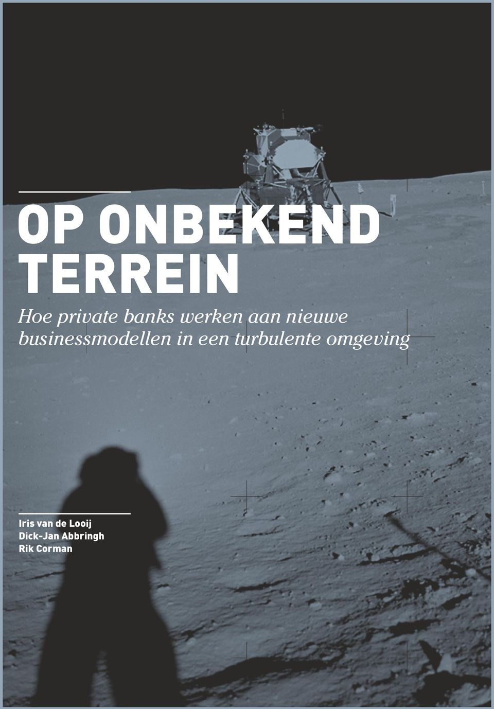 businessmodellen in een turbulente