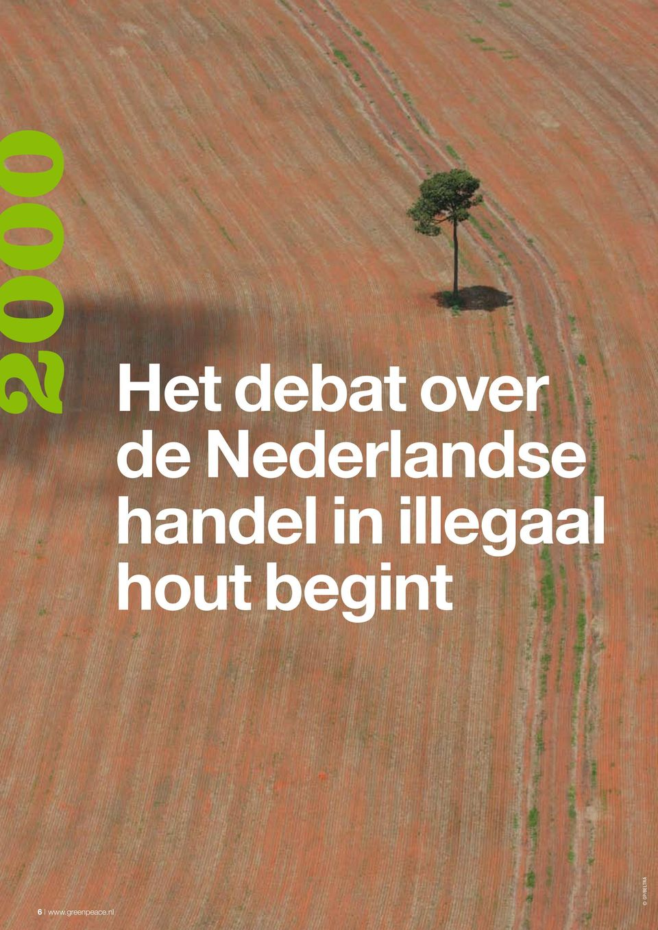 illegaal hout begint 6