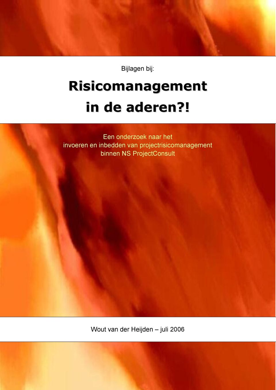 inbedden van projectrisicomanagement