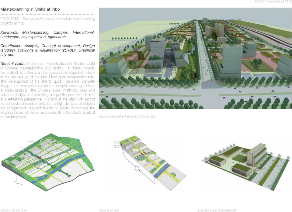 Lay-out. General vision: In one year I was introduced in the fast world of Chinese masterplanning and design.