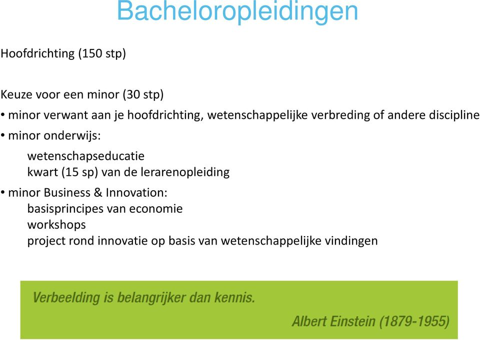 wetenschapseducatie kwart (15 sp) van de lerarenopleiding minor Business & Innovation: