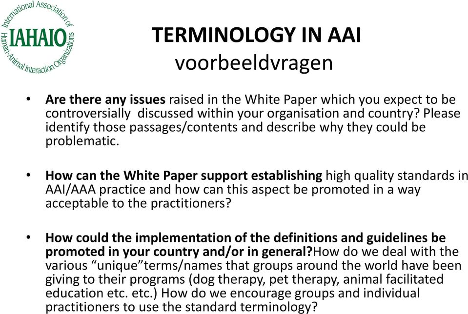 How can the White Paper support establishing high quality standards in AAI/AAA practice and how can this aspect be promoted in a way acceptable to the practitioners?