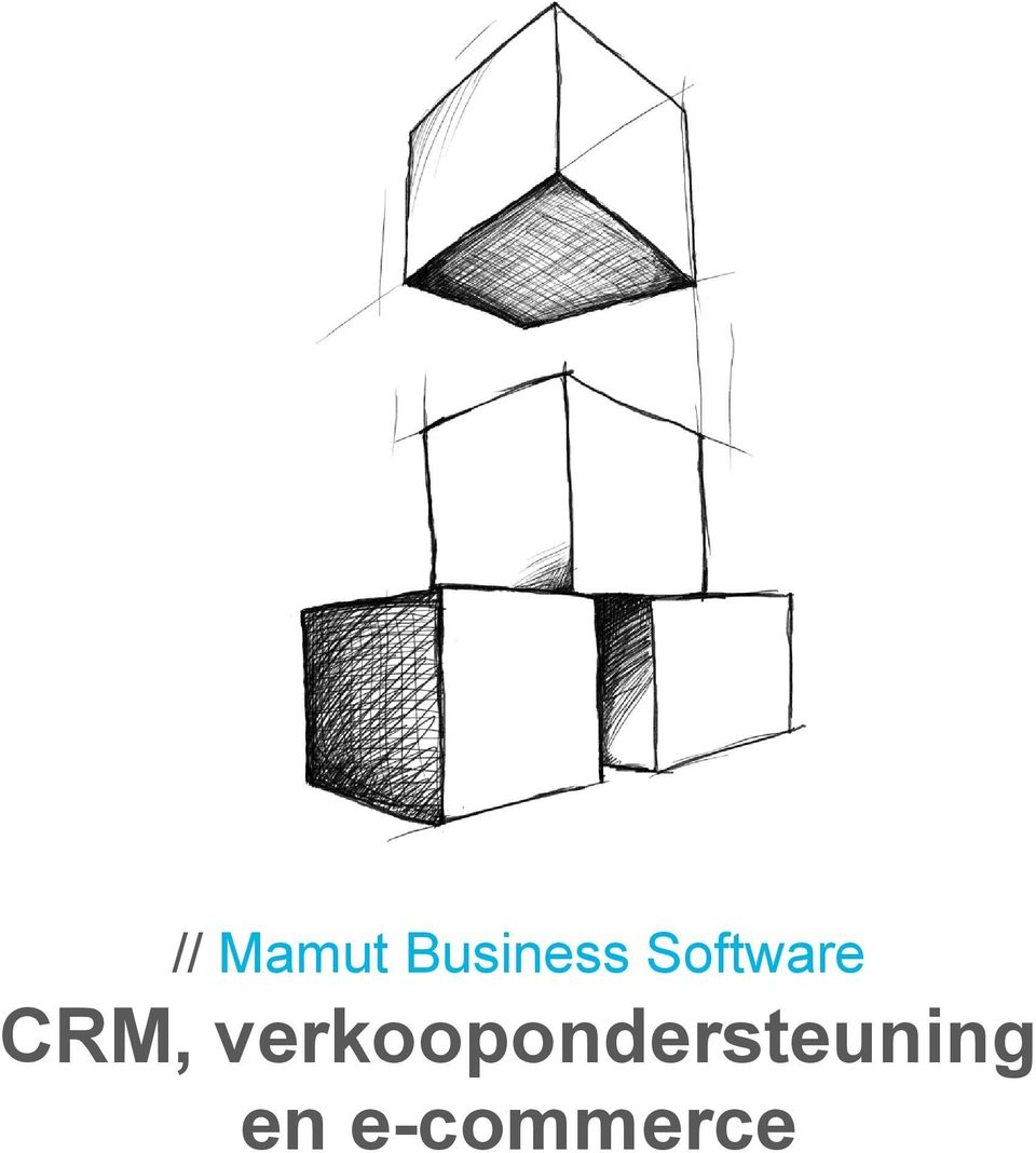 Software CRM,