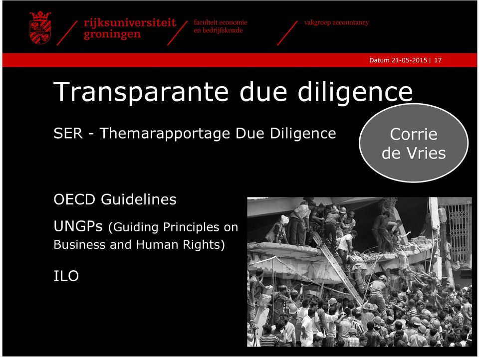 Diligence Corrie de Vries OECD Guidelines