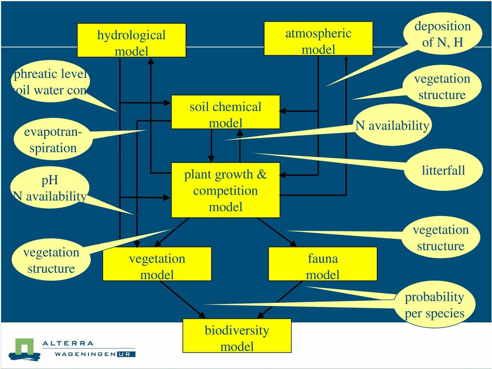 availability plant growth & competition model litterfall vegetation structure