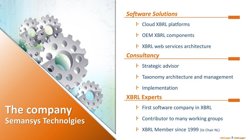 Ⱶ Implementation XBRL Experts The company Semansys Technolgies Ⱶ First software