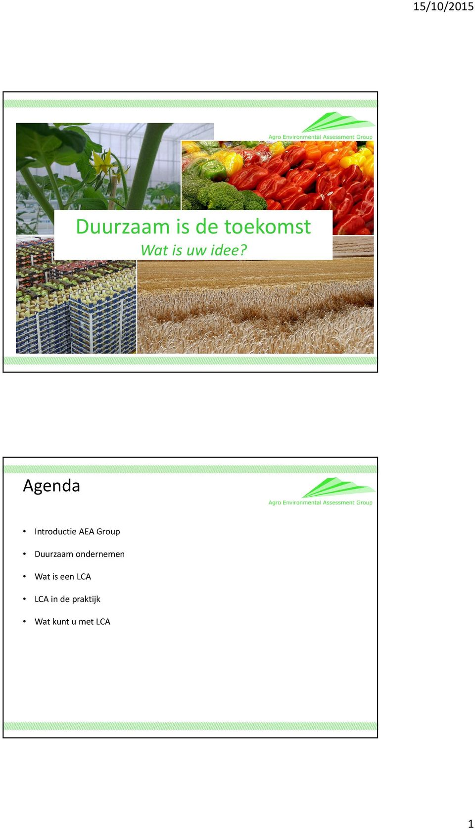 Agenda Introductie AEA Group Duurzaam