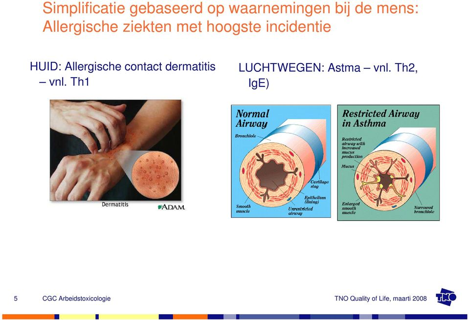 incidentie HUID: Allergische contact
