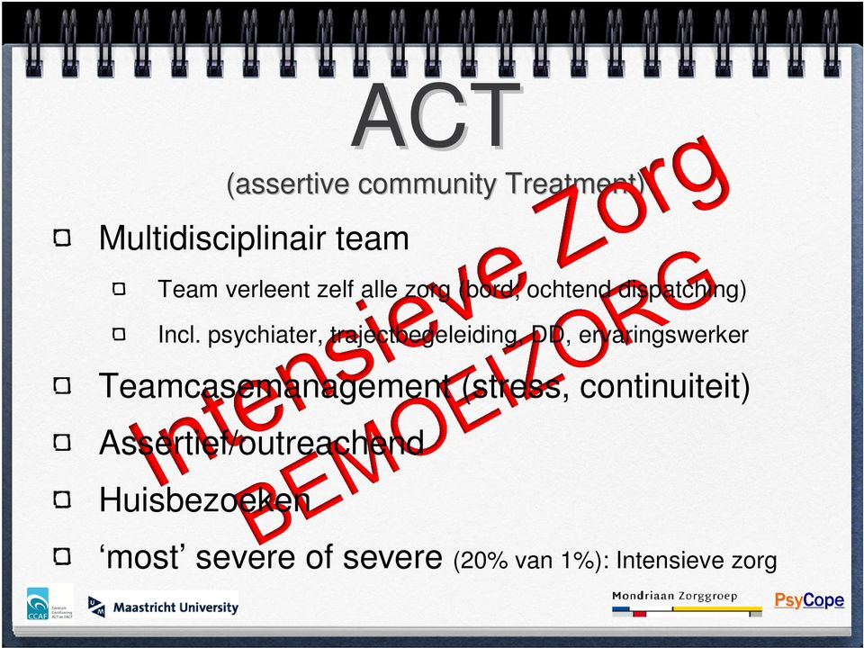 psychiater, trajectbegeleiding, DD, ervaringswerker Teamcasemanagement