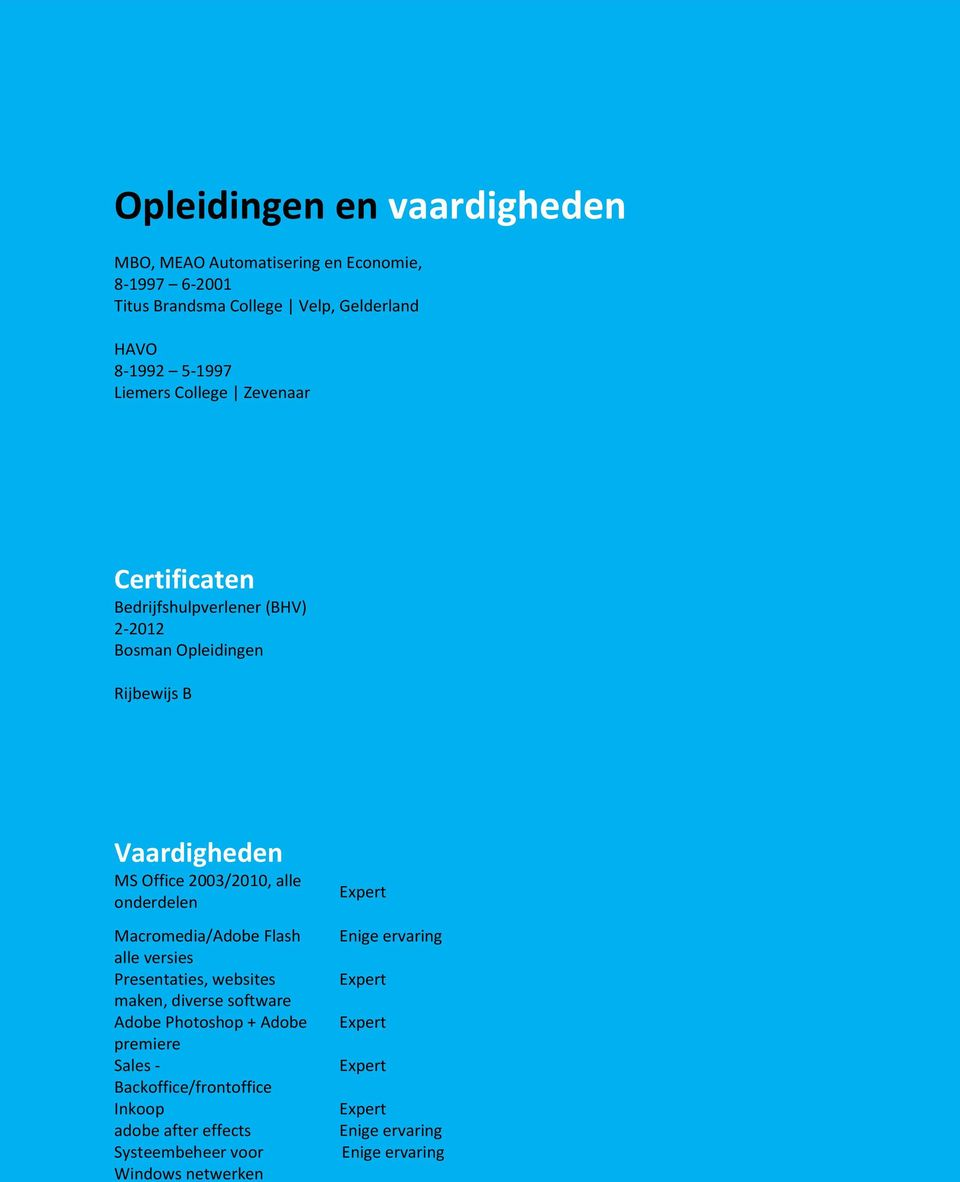 Vaardigheden MS Office 2003/2010, alle onderdelen Macromedia/Adobe Flash alle versies Presentaties, websites maken, diverse
