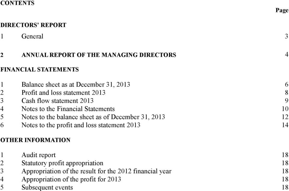 balance sheet as of December 31, 2013 12 6 Notes to the profit and loss statement 2013 14 OTHER INFORMATION 1 Audit report 18 2 Statutory