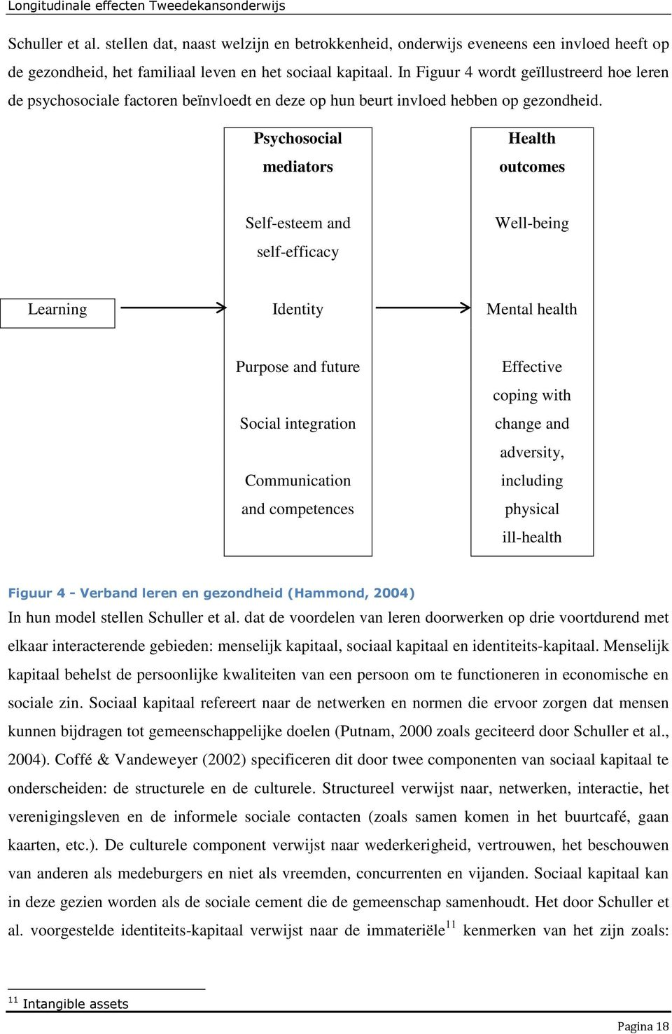 Psychosocial mediators Health outcomes Self-esteem and self-efficacy Well-being Learning Identity Mental health Purpose and future Social integration Communication and competences Effective coping