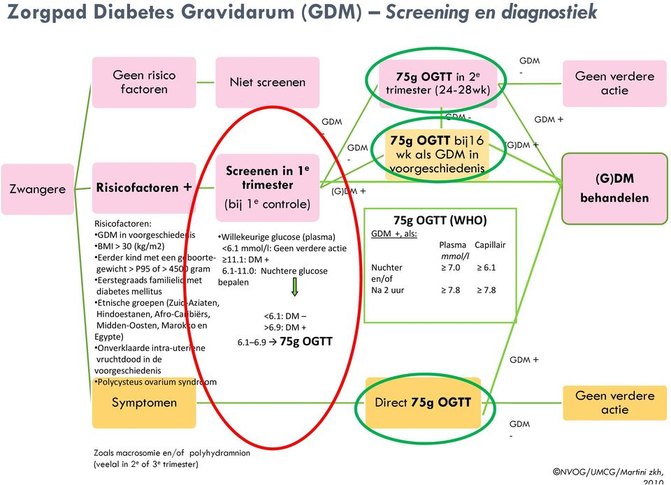 diabetes gravidarum dieet