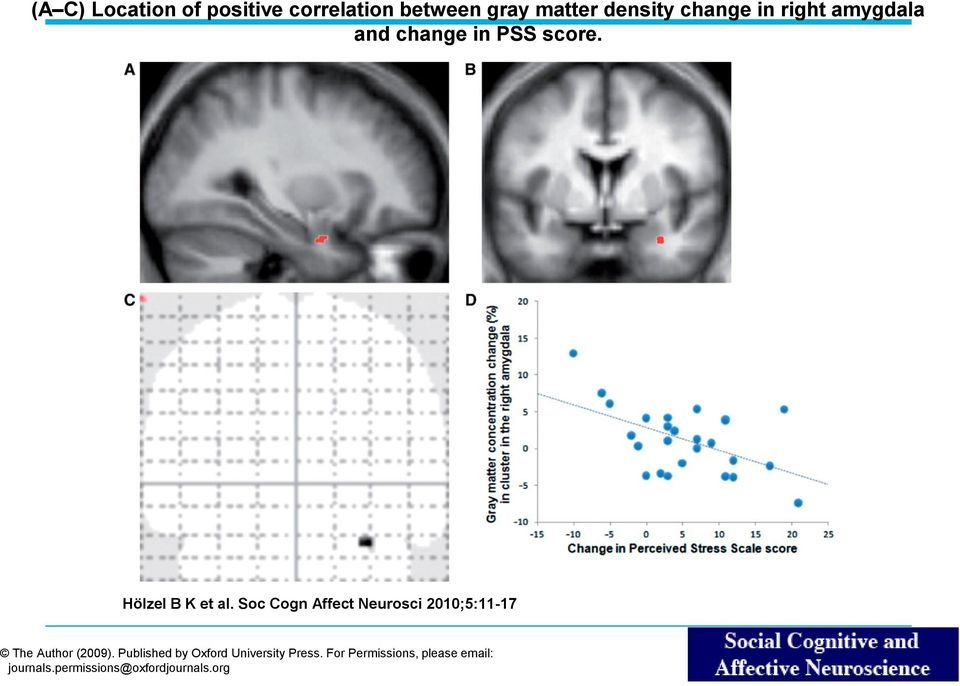 Soc Cogn Affect Neurosci 2010;5:11-17 The Author (2009).