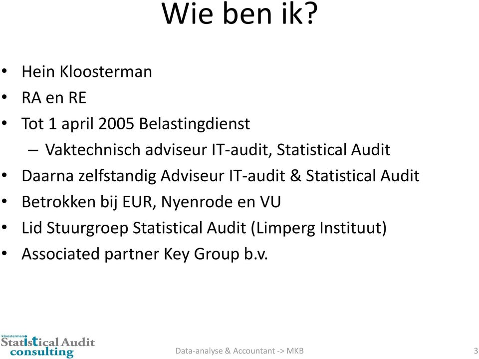 adviseur IT-audit, Statistical Audit Daarna zelfstandig Adviseur IT-audit