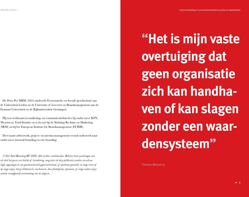 Hij was werkzaam in marketing- en communicatiefuncties bij onder meer KPN, Meavita en Total Identity en is docent bij de Stichting Reclame en Marketing (SRM) en bij het European Institute for