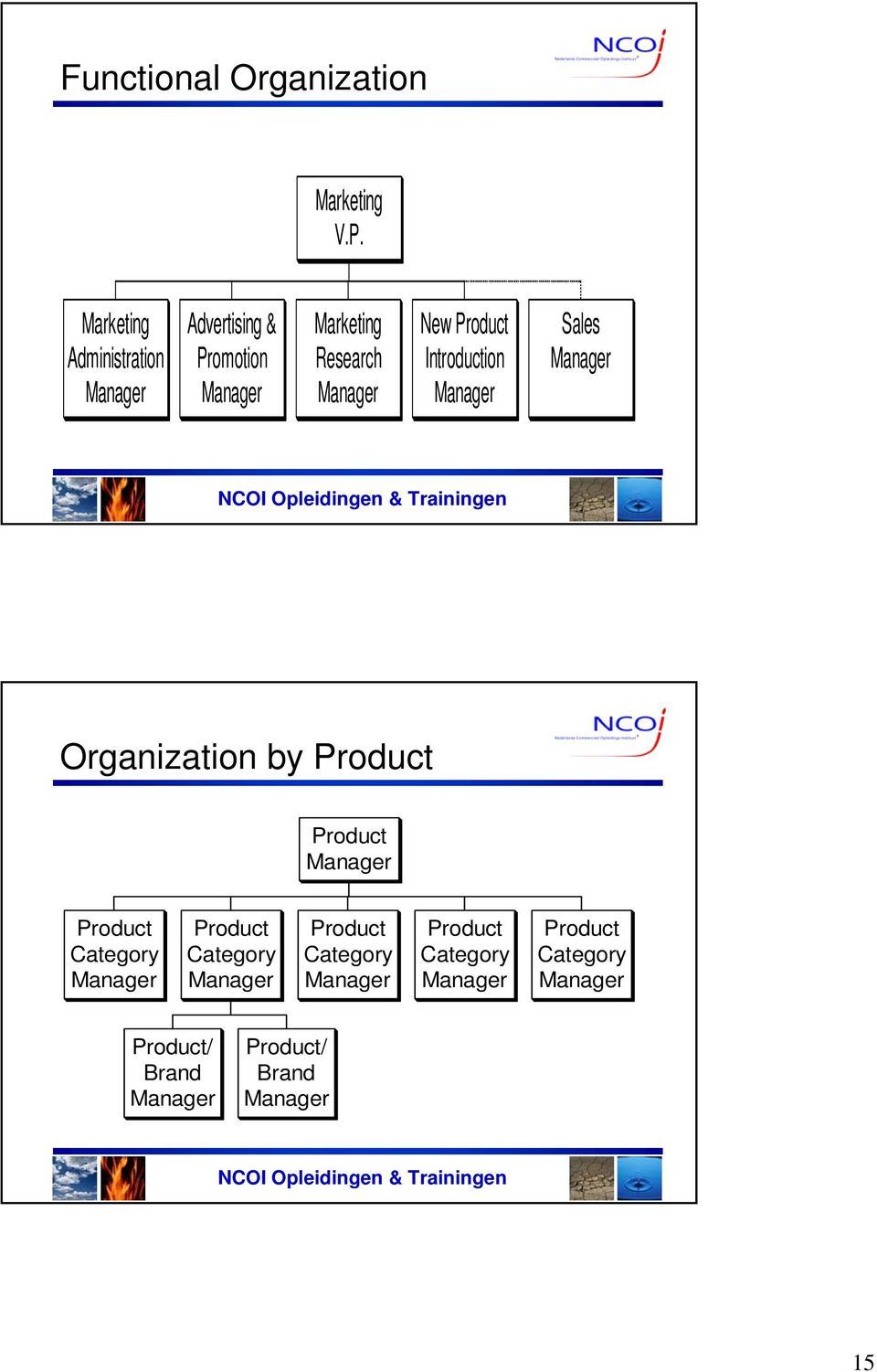 Product Introduction Sales Organization by Product Product Product