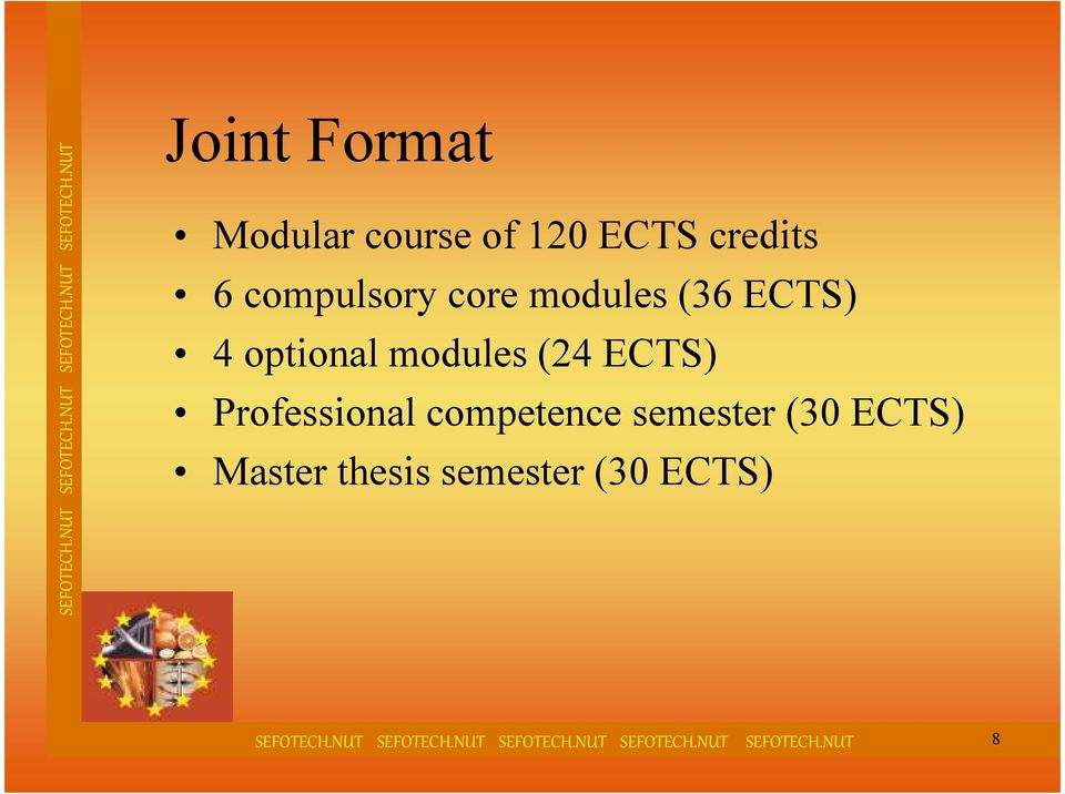 modules (24 ECTS) Professional competence semester