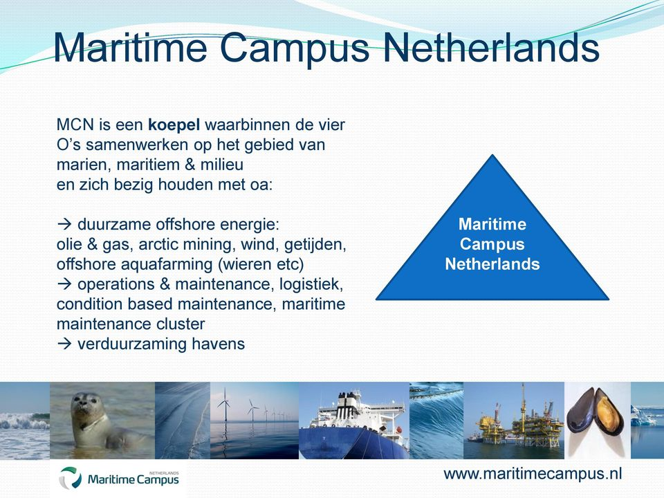 wind, getijden, offshore aquafarming (wieren etc) operations & maintenance, logistiek,