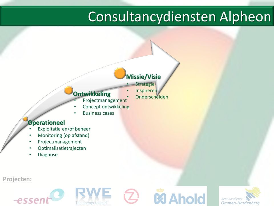 Optimalisatietrajecten Diagnose Missie/Visie Strategie