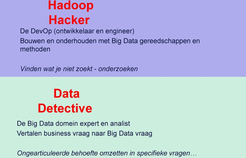 Data Detective De Big Data domein expert en analist Vertalen business vraag