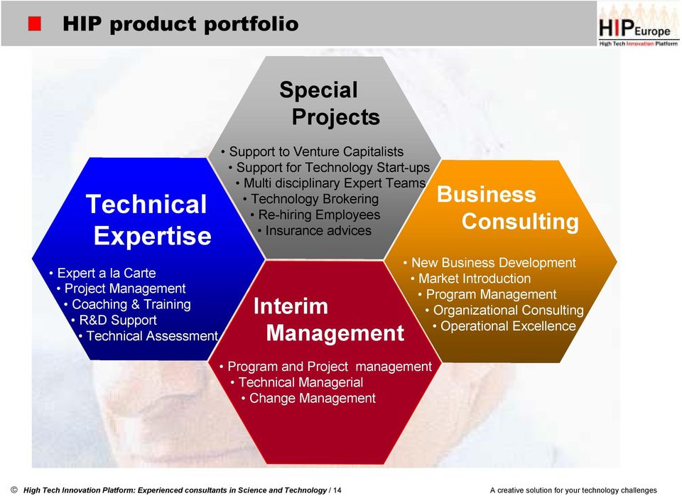 Program and Project management Technical Managerial Change Management Business Consulting New Business Development Market Introduction Program Management