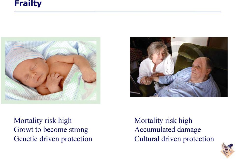 protection Mortality risk high